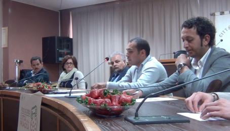 conferenza stampa Festa fragola