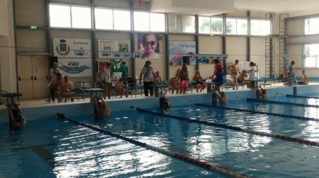 gara nuoto