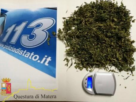 marijuana a Pisticci