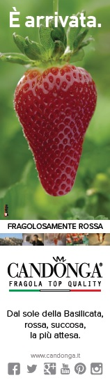 Segnalibro di Candonga Fragola Top Quality per Feltrinelli RED