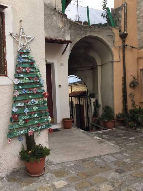 TURSI. ALBERI X Natale