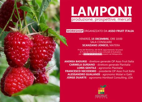 invito-workshop-lamponi-e-visita-siti-produttivi