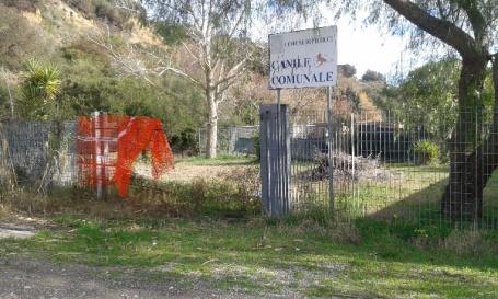 IL CANILE COMUNALE (003).docx