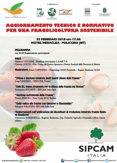 locandina fragola 22 febbr. 2018