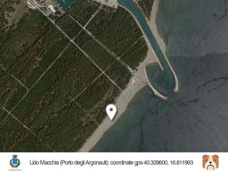 Geolocalizzazione dog beach Lido Macchia
