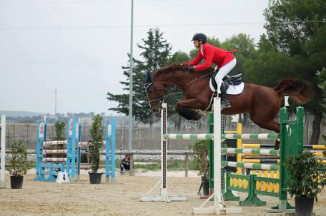 mancinelli equitazione