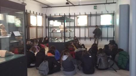 museo siritide 1
