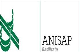 logo Anisap B.
